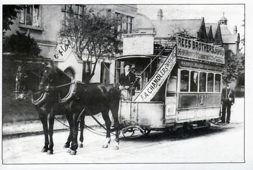 rsz_tram-b-best-x-horse1