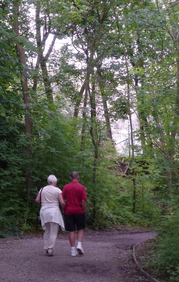 Walking in Woodland Walk
