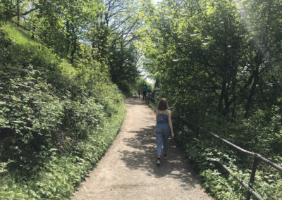 Walking the Woodland Trail