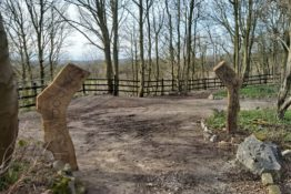 Woodland Walk Open for Bank Holiday 25th May Only