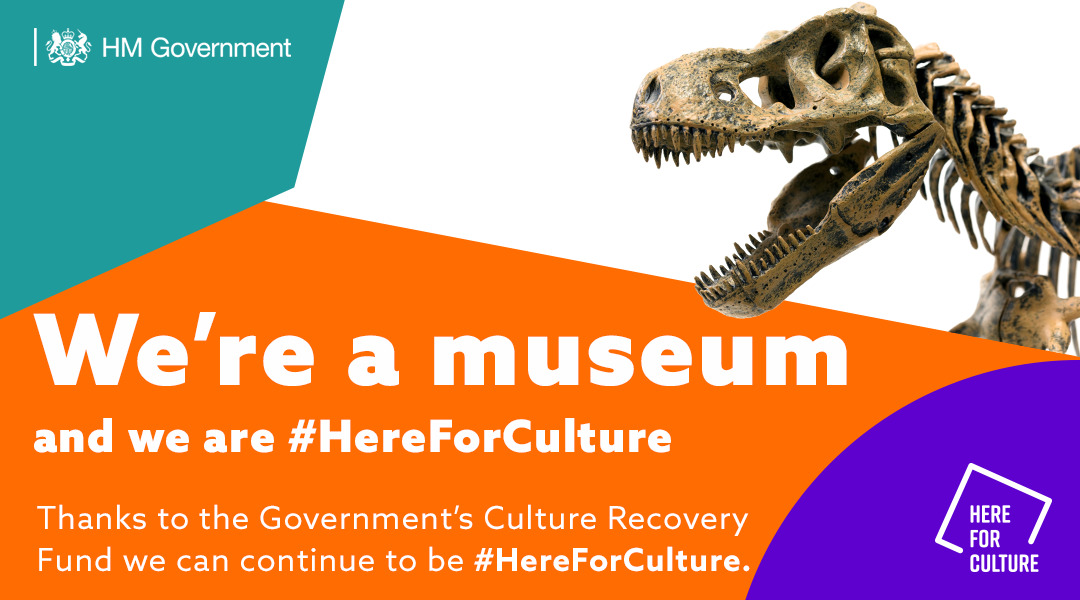HereForCulture_Museum